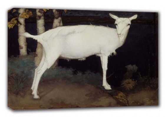 Mankes, Jan: Young White Goat. Fine Art Animal Canvas. Sizes: A3/A2/A1 (00514)
